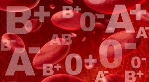 Hayvanların Kan Grupları Farklı mıdır?